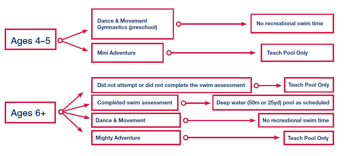This flow chart outlines which campers swim in which pool.