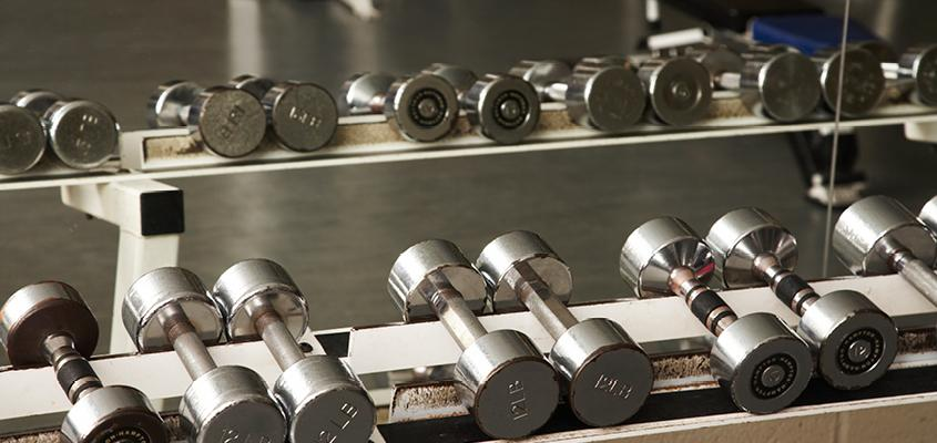 Several free weights on a rack